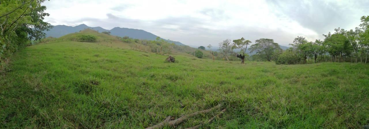 Venta de Finca San Pedro de Turrubares para ganado de engorde o lechería.