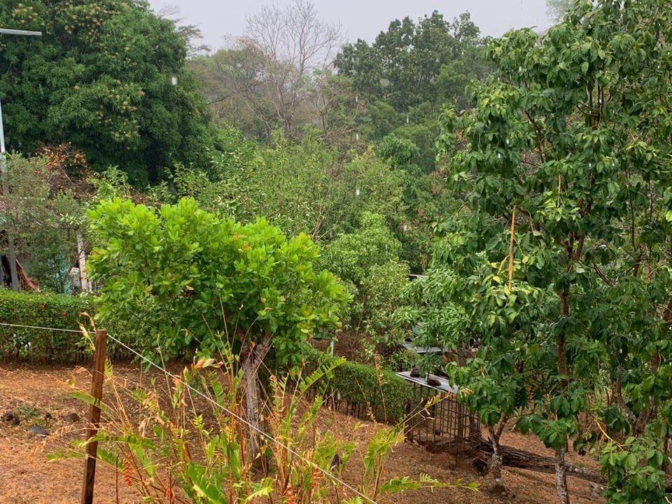 terreno-lote-quinta-san pablo-san-pedro-turrubares-premier-propiedades (4)