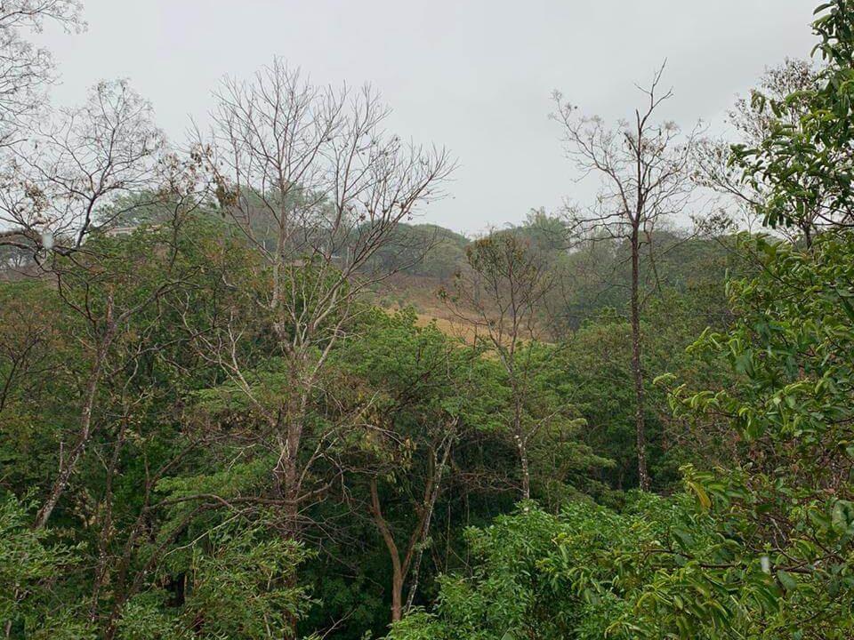 terreno-lote-quinta-san pablo-san-pedro-turrubares-premier-propiedades (6)