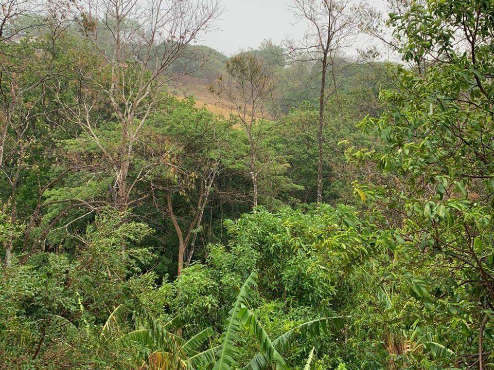 terreno-lote-quinta-san pablo-san-pedro-turrubares-premier-propiedades (7)