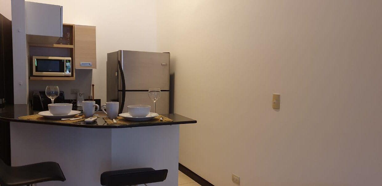 alquiler-apartamento-avaloncountry-premier-propiedades (7)