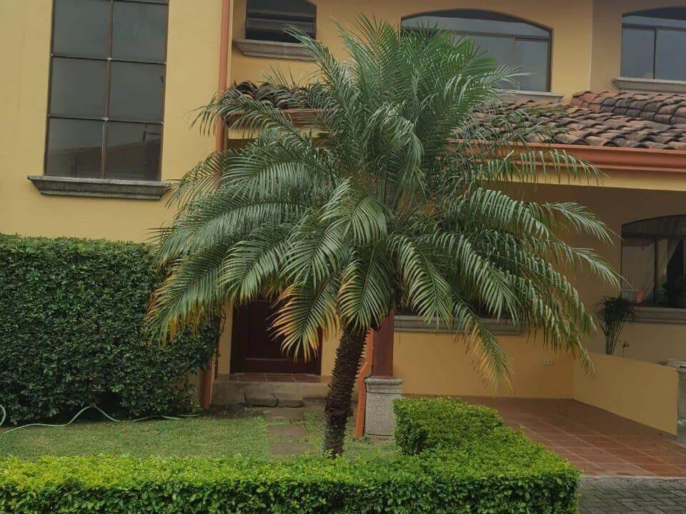 alquiler-de-apartamento-guachipelin-escazu-premier-propiedades (17)