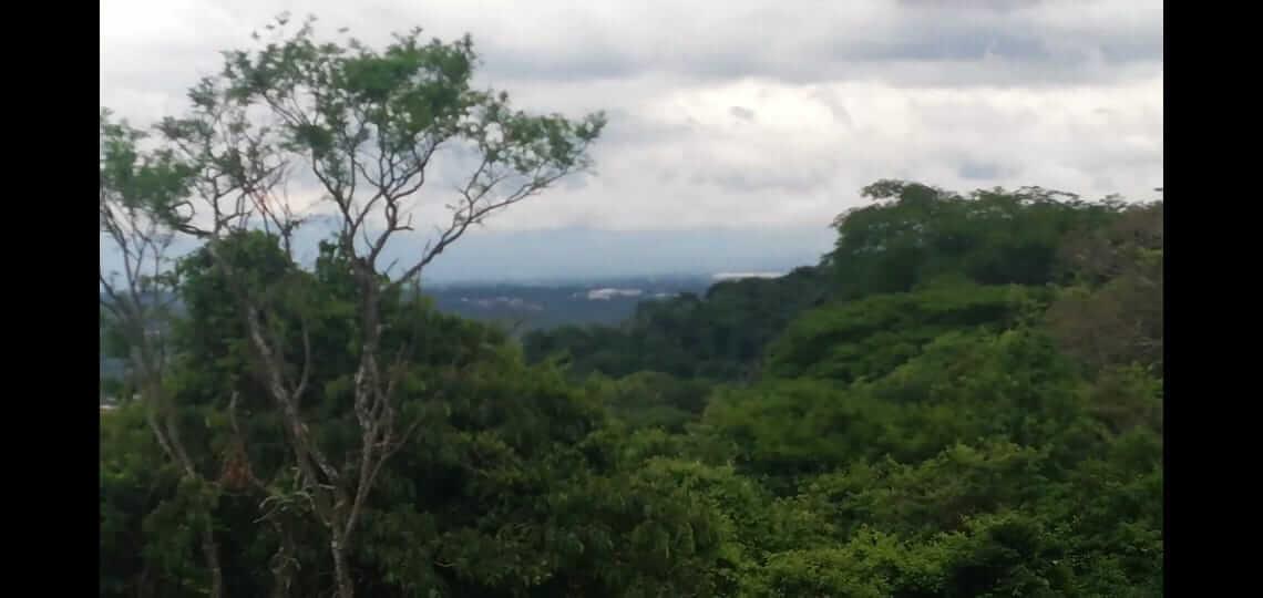 venta-de-lote-en-ondominio-cerro-colon-premier-propiedades (1)