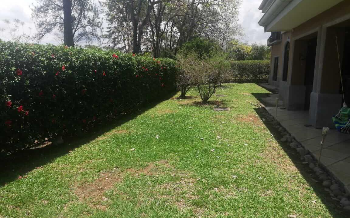 venta-de-casa-residencial-hacienda-los-reyes-premier-propiedades (7)