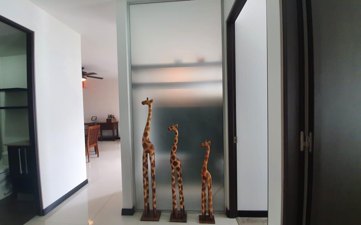 alquiler-apartamento-santa-ana-premier-propiedades (17)