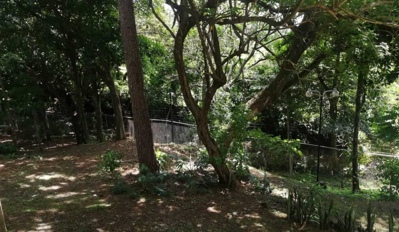 condominio-bosque-dorado-piedades-de-santa-ana-premier-propiedades (4)