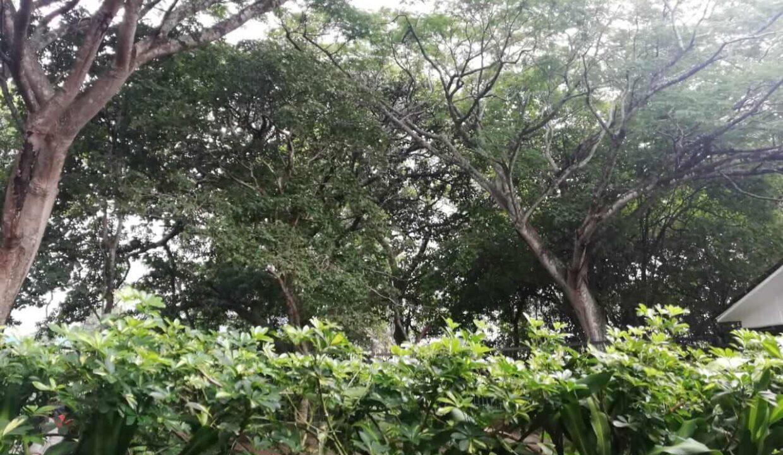 condominio-hacienda-Real-piedades-de-santa-ana-premier-propiedades (11)