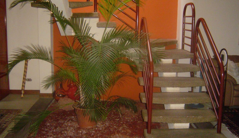 alquiler-apartamento-casa-rio-oro-premier-propiedades (9)